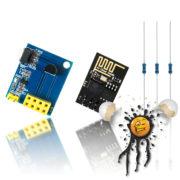IoT WLan Wifi Temperatursensor